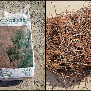 Crushed Pine Needles Mulch