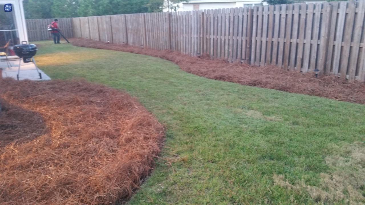 Pine Straw Mulch Round Bales Martins Nursery Landscape Co - Bales